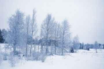 Krajobraz Finlandii