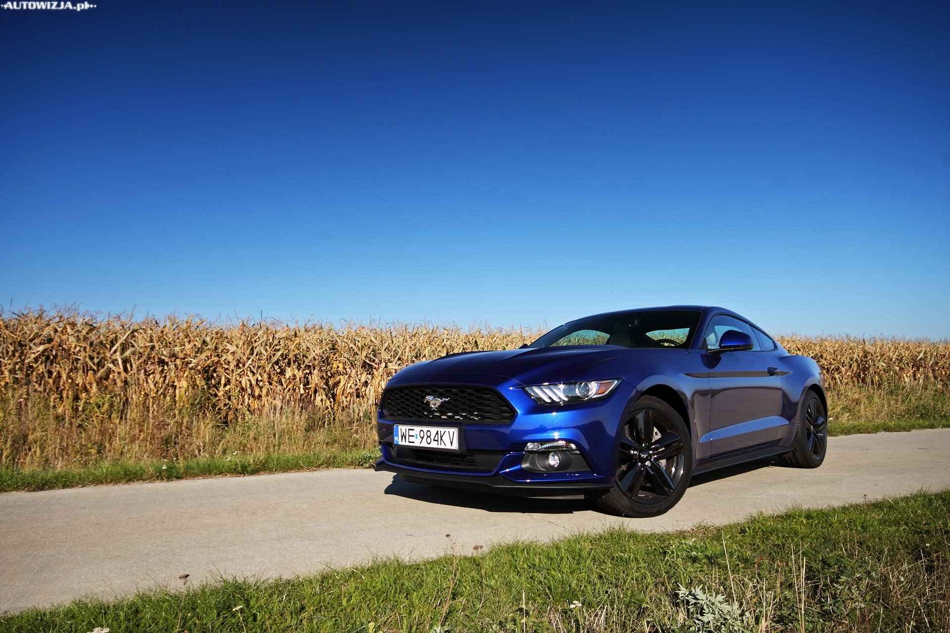 ford mustang fastback 2 3 ecoboost 317 km auto test motoryzacja. Black Bedroom Furniture Sets. Home Design Ideas